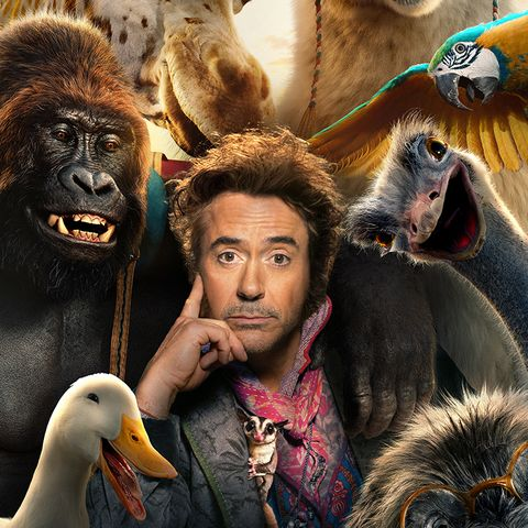 Dolittle: Robert Downey Jr. Mediates NFL Mascot Dispute in Bizarre Promo